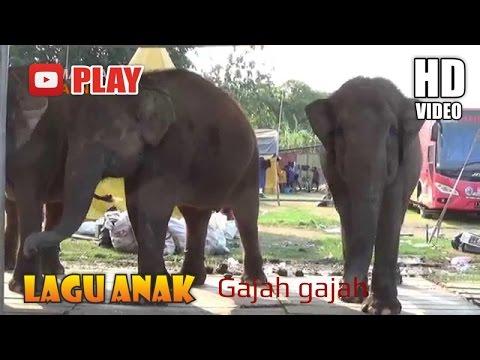 Gajah - gajah Lagu Daerah - Lagu Anak Indonesia Populer Sepanjang Masa