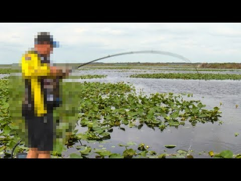 LEAKED Topwater Frog Bass Fishing Tips