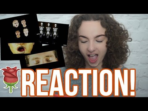 VALENTINE BY 5SOS MUSIC VIDEO REACTION!