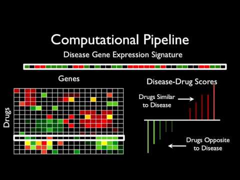 Data Science in Drug Discovery | Wrangle Conference