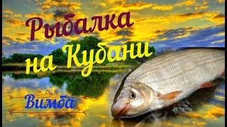 Рыбалка на реке Кубань Отличный улов осенью Рыбца Вимба Карася и Густеры Краснодар 2021