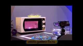 Галилео. Эксперимент. Лампочка в микроволновке