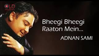 Bheegi Bheegi Raaton Mein - Adnan Sami