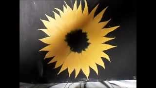 Como pintar girasol y lirio(As draw sunflower and Lily! )