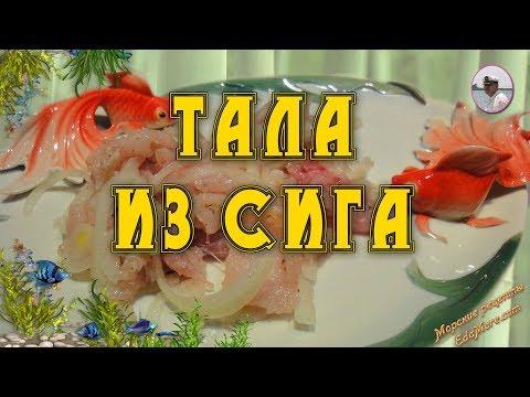 Тала из сига. Вкусная речная рыба рецепт от Petr de Cril'on