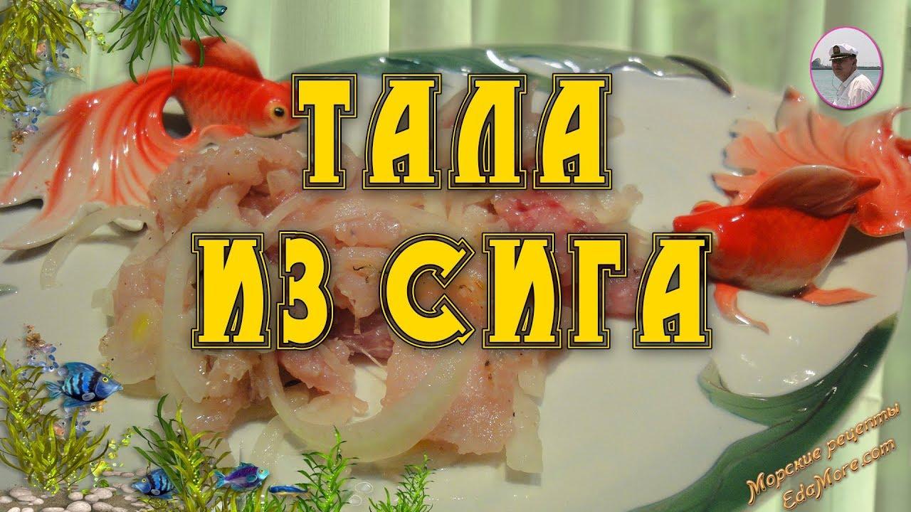 Рыба речная рецепты с фото простые и вкусные
