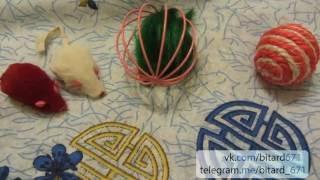 Дешевые кошачьи игрушки с Aliexpress