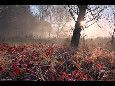 Dvorak - Romance for piano and violin, Op.11