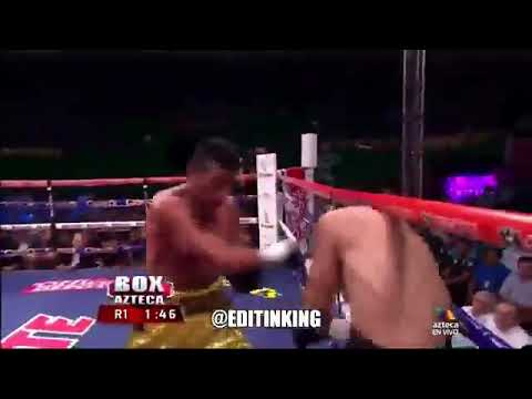 Image result for Matrix Boxer dodges every punch & A Blind Referee stops the fight anyway.