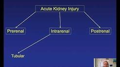 hqdefault - Atn Kidney Transplant Patients