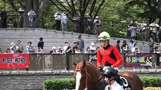 本橋孝太騎手 東京競馬場