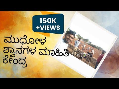 Mudhol hound Dog