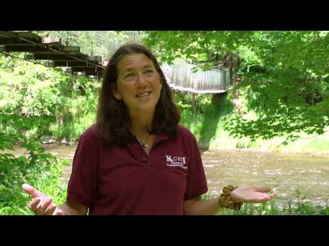 Keystone College Environmental Education Institute (KCEEI)