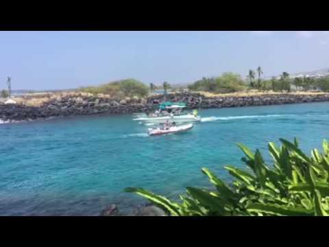 Hawaii Harbor - Gentry's Marina