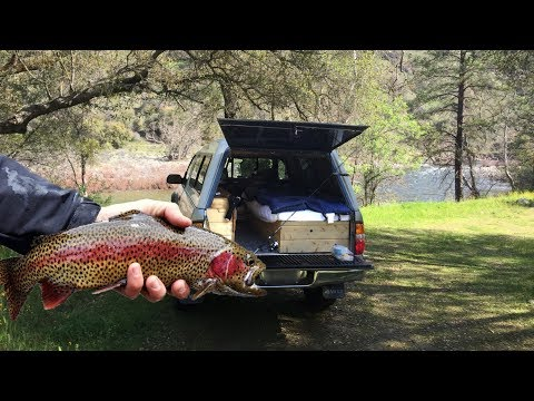 Truck Camp Trout Fishing