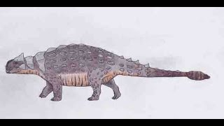 How to draw an accurate Ankylosaurus