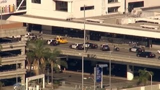 Shooting Rampage at Los Angeles Airport: How It Happened