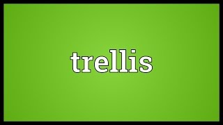 Trellis Meaning