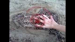 ESPUMAS AO VENTO LEGENDADO FAGNER(RAPOSA CATIVA)