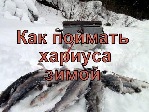 чем прикармливать хариуса на зимней рыбалке
