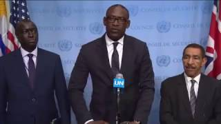 Abdoulaye Diop (Mali) on the situation in Mali - Media Stakeout