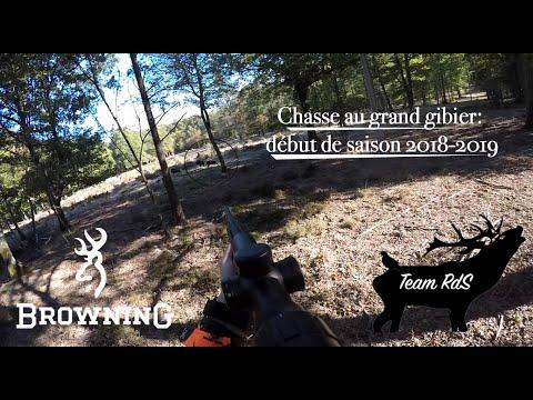 Chasse au grand gibier: début de saison 2018-2019, Sangliers, Cervidés, Chevreuils, avec la Team RdS