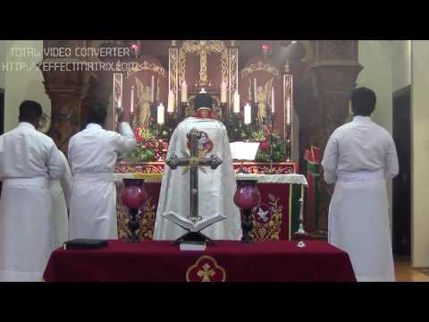 Fr Daniel Poovannathil -  Malayalam Holy Mass - St.Marys  Catholic Church, Doha