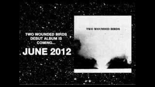 Watch Two Wounded Birds The Outer World video