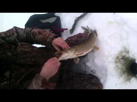 Рыбалка на чумляке
