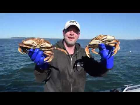EVERYTHING DUNGENESS CRAB! Catch, Clean, Cook, Eat!