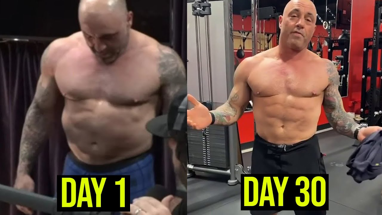 JOE ROGAN CARNIVORE DIET RESULTS & SHOULD YOU DO IT?! - YouTube