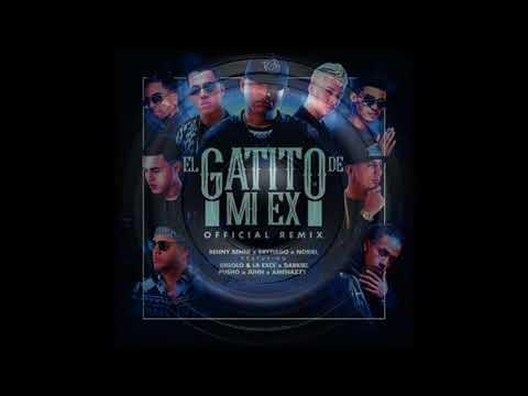 El Gatito De Mi Ex [Remix] [BASS BOOSTED]