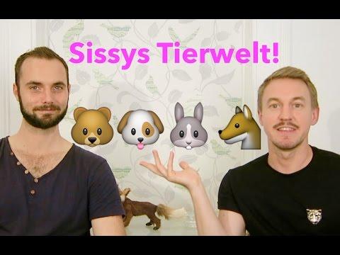 Sissys schwule Tierwelt: Von Bären, Ottern und Twinks - mit Gay-Slang-Quiz-Challenge!