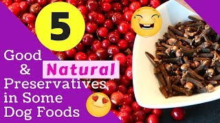 5 Good and Natural Preservatives in Some Dog Foods