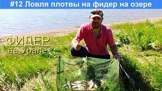 Ловля плотвы на фидер на озере Малый Кисегач Рыбалка в Челябинской области