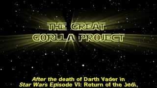 Star Wars Darth Vader Gorilla - Episode VI (and a half) The Great Gorilla Project