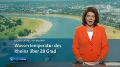 Rhein Wassertemperatur steigt auf 28 Grad - 05.08.2018
