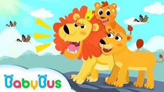 ❤ 可愛的小獅子 | 動物兒歌 | 國語兒童歌曲 | 幼兒童謠 | 寶寶巴士