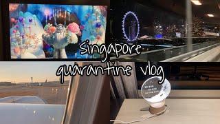 [12월 8일 기준] 싱가폴 도착 후 입국심사 그리고 …