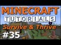 Minecraft Tutorials - E35 Nether Portal (Survive and Thrive II)
