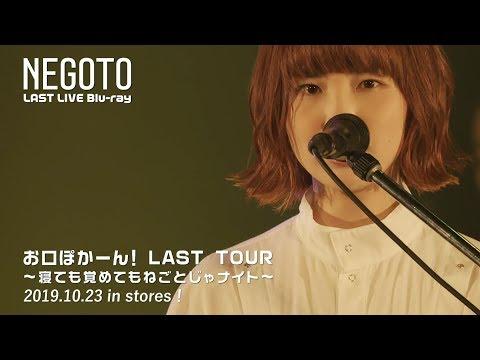 お口ぽかーん!LAST TOUR 〜寝ても覚めてもねごとじゃナイト〜 -Teaser 01-