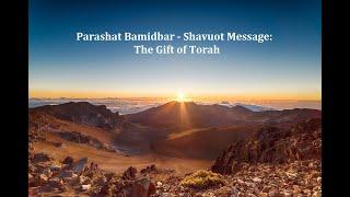 Jerusalem Lights Parashat Bamidbar - Shavuot Message 5781: The Gift of Torah