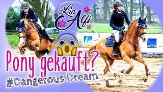 Lia & Alfi - Who the f.... is Dobby - Wir kaufen ein Pony