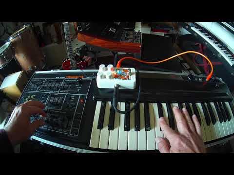 Ace Tone PS-1000 + EHX Canyon