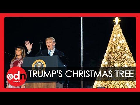 Trump and Melania Light National Christmas Tree in Washington