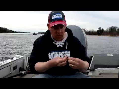 How To Set Up  For Sturgeon Fishing