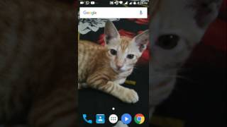 Gambar cover How to download WhatsApp pro mod apk 100% working