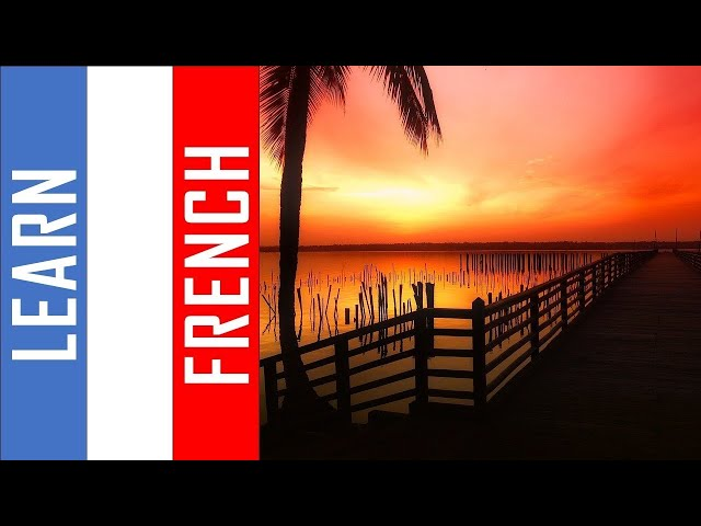 Learn French in Benin I  500 Verbs and Phrases