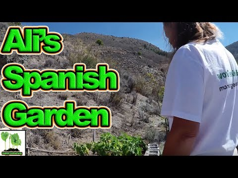 We Visit Ali Bull's (Face Book Admin) Garden In Spain