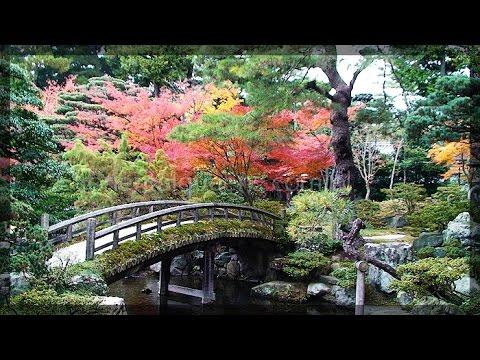 Kyoto Autumn Leaves At Daitokuji Temple Japanese Garden Japan